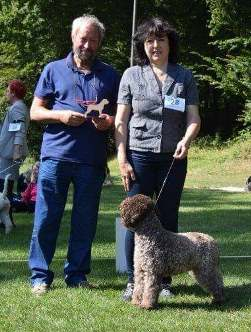 Lagotto-Lenia of Golden Comfort Mililojpg