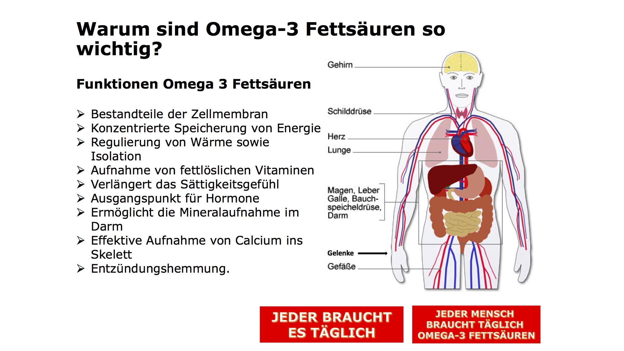 Gemütlich Funktion Der Galle Fotos - Menschliche Anatomie Bilder ...