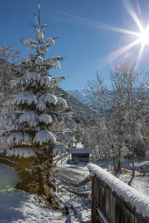 winter_klein-16jpg