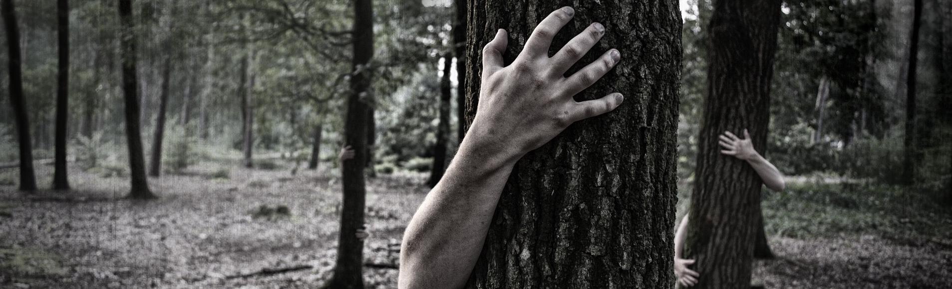 hands-984032_1920jpg