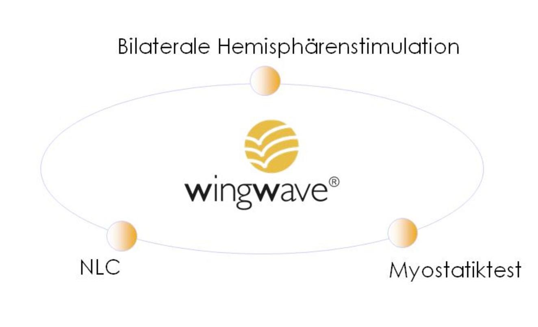 ww-diagrammcutjpg