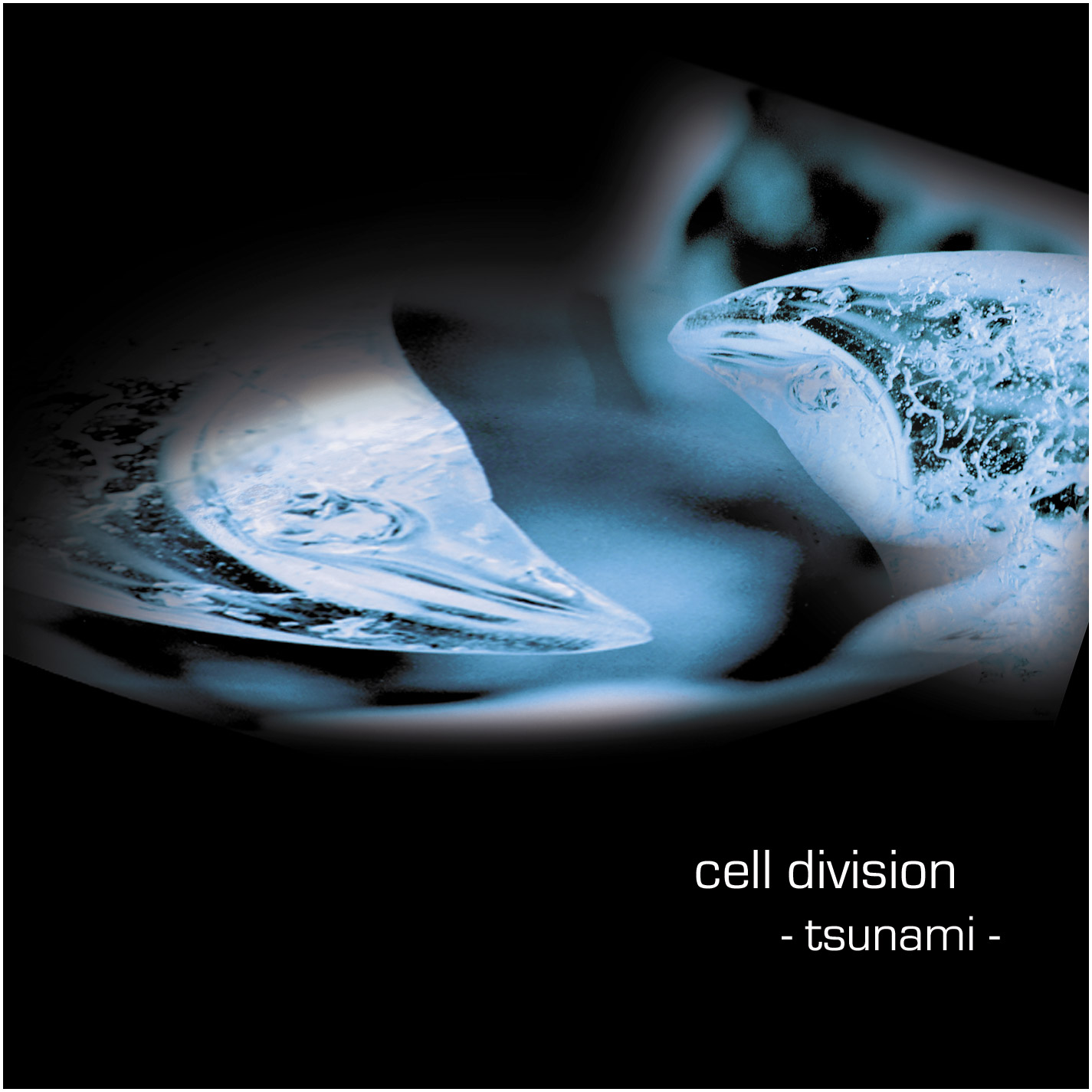 Cell Division (Tsunami) | CD