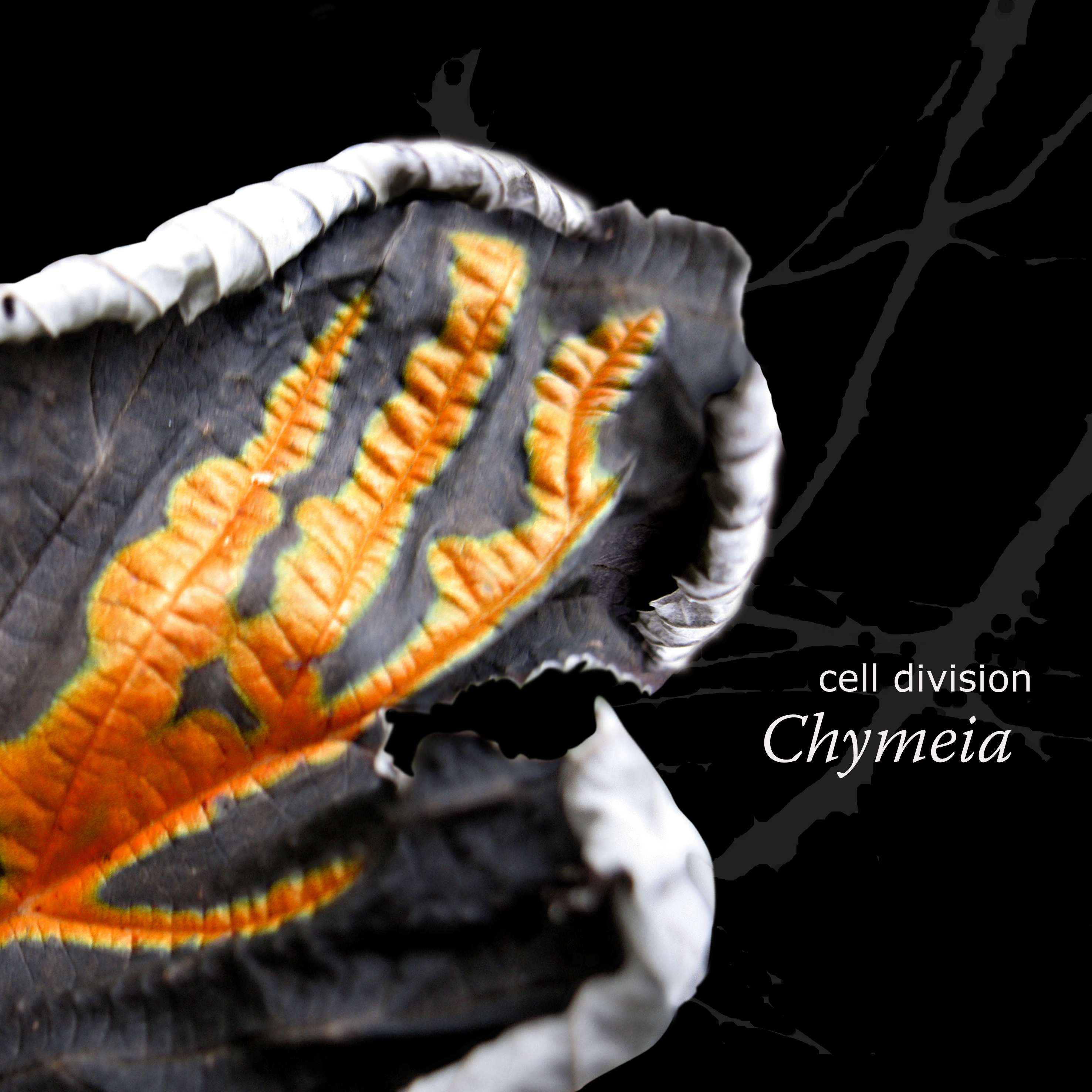 Cell Division (Chymeia) | CD