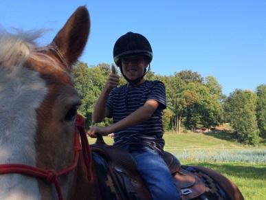 pferde pflege spiele