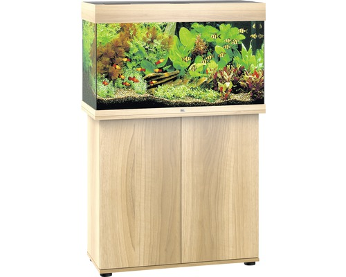 aquarium aktion. Black Bedroom Furniture Sets. Home Design Ideas