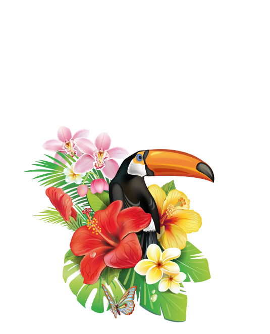 WOW-Cigars