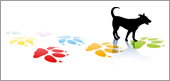 logo-hundeshop24jpg