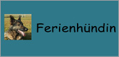 logo_ferienhuendinjpg