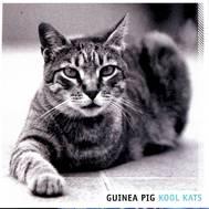 234363-guinea-pig-kool-katsjpg