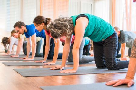 Yoga-Hatha-vinyasa-cat-luzern-miiruum-WEb12jpg