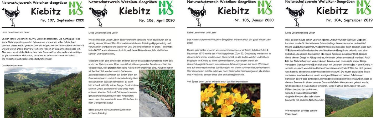 Kiebitz Sept 2019 bis Sept 2020JPG