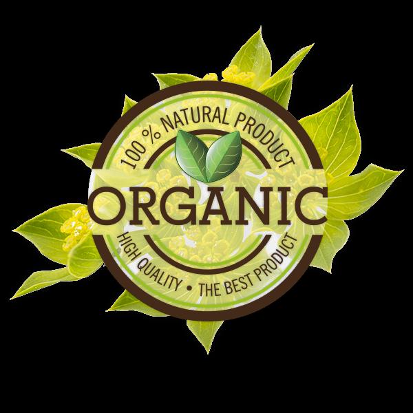 organic Ethno Healthpng