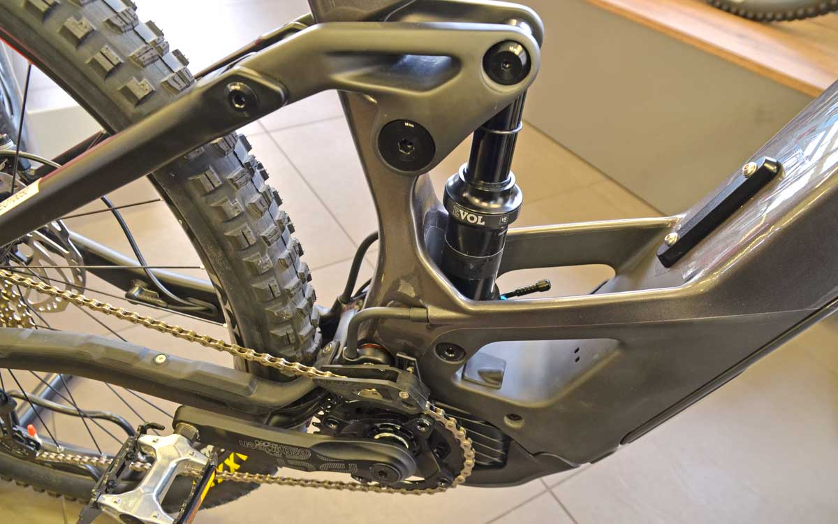 Orbea Wild FS Federung Fox Float DPS Performance Trunnion