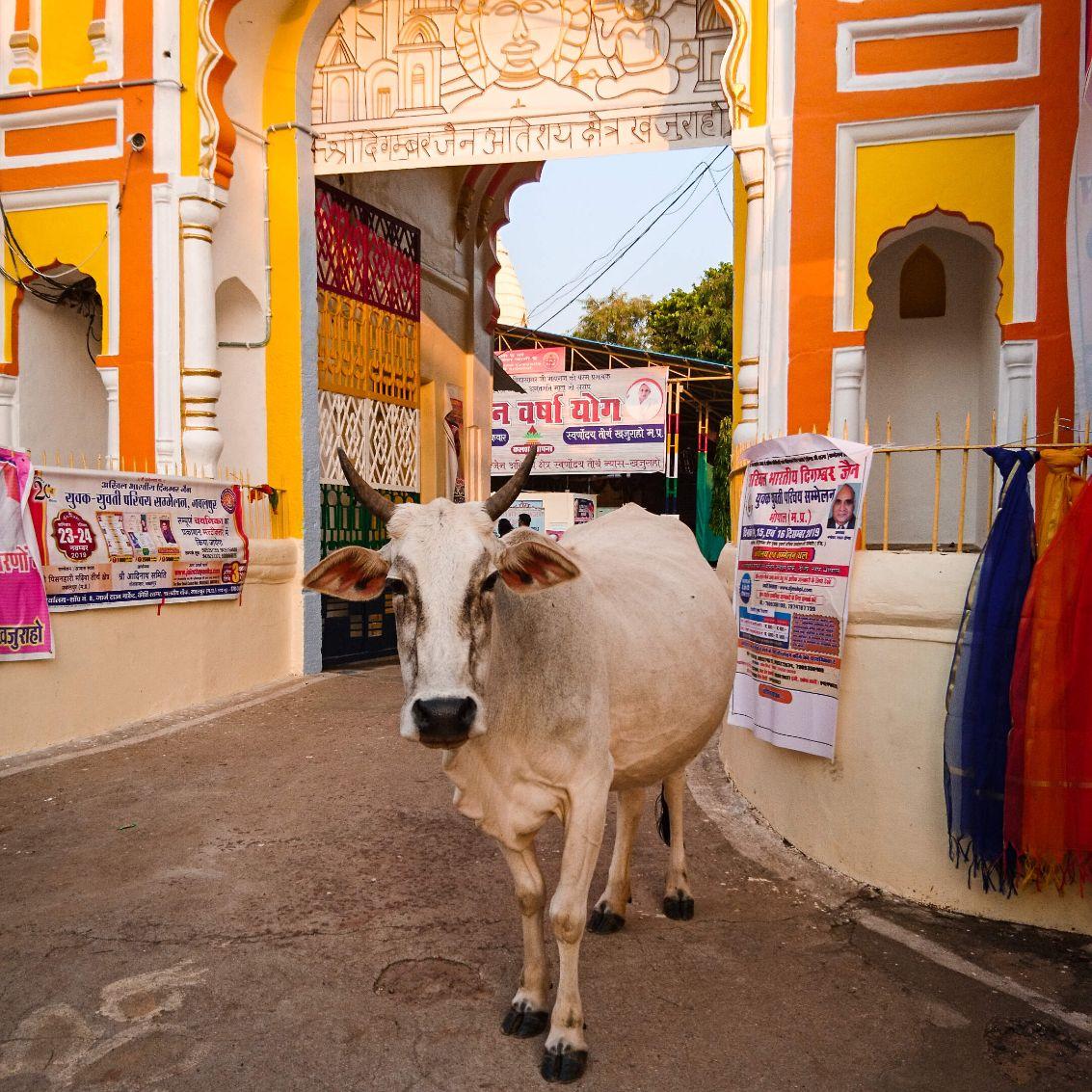 Willkommen In Bollywood - Tamilisch