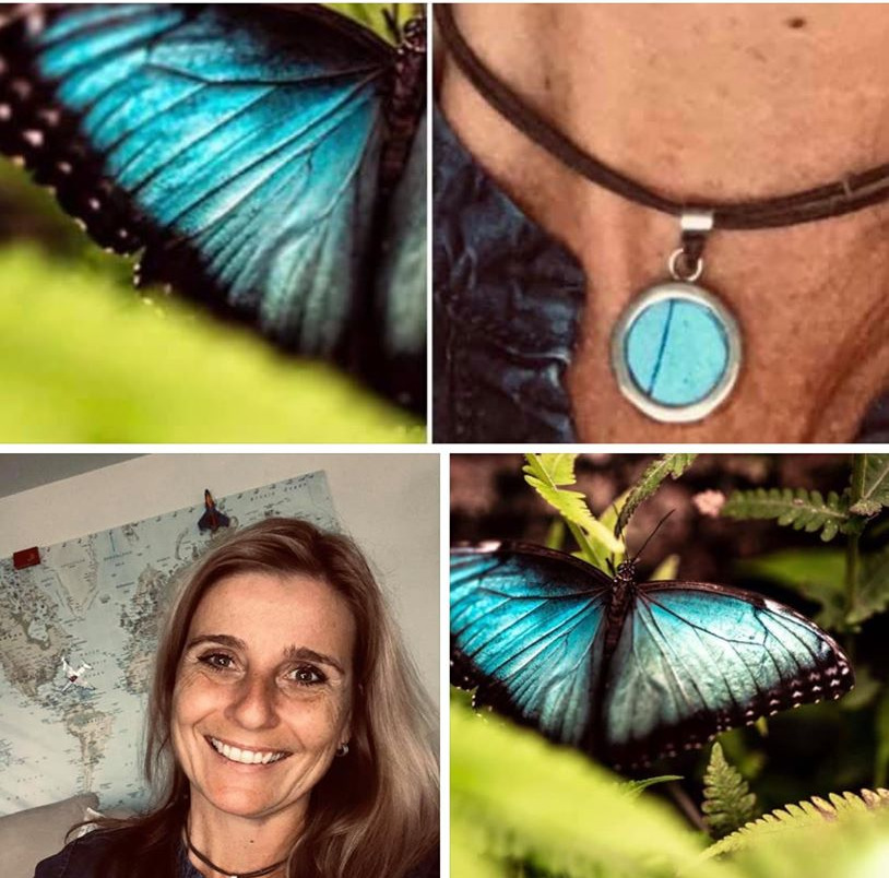 mariposa azuljpg