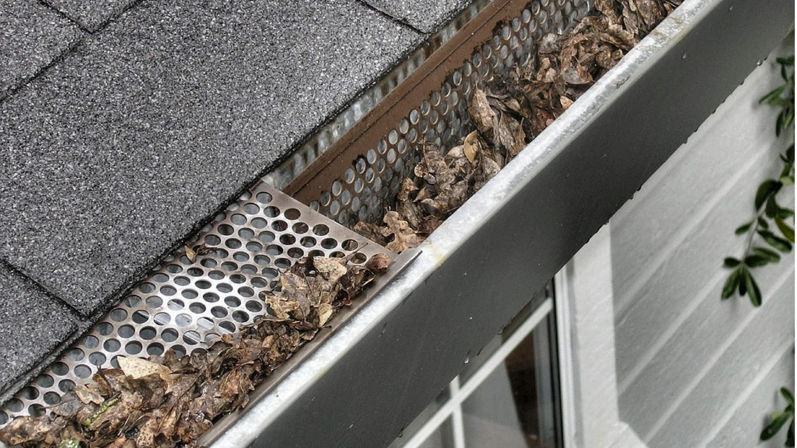 Bevorzugt Tipps vom Dachdecker - Ratgeber bei verstopften Dachrinnen GH17