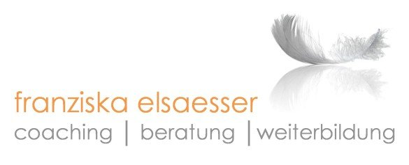 logo-fe-thinjpg