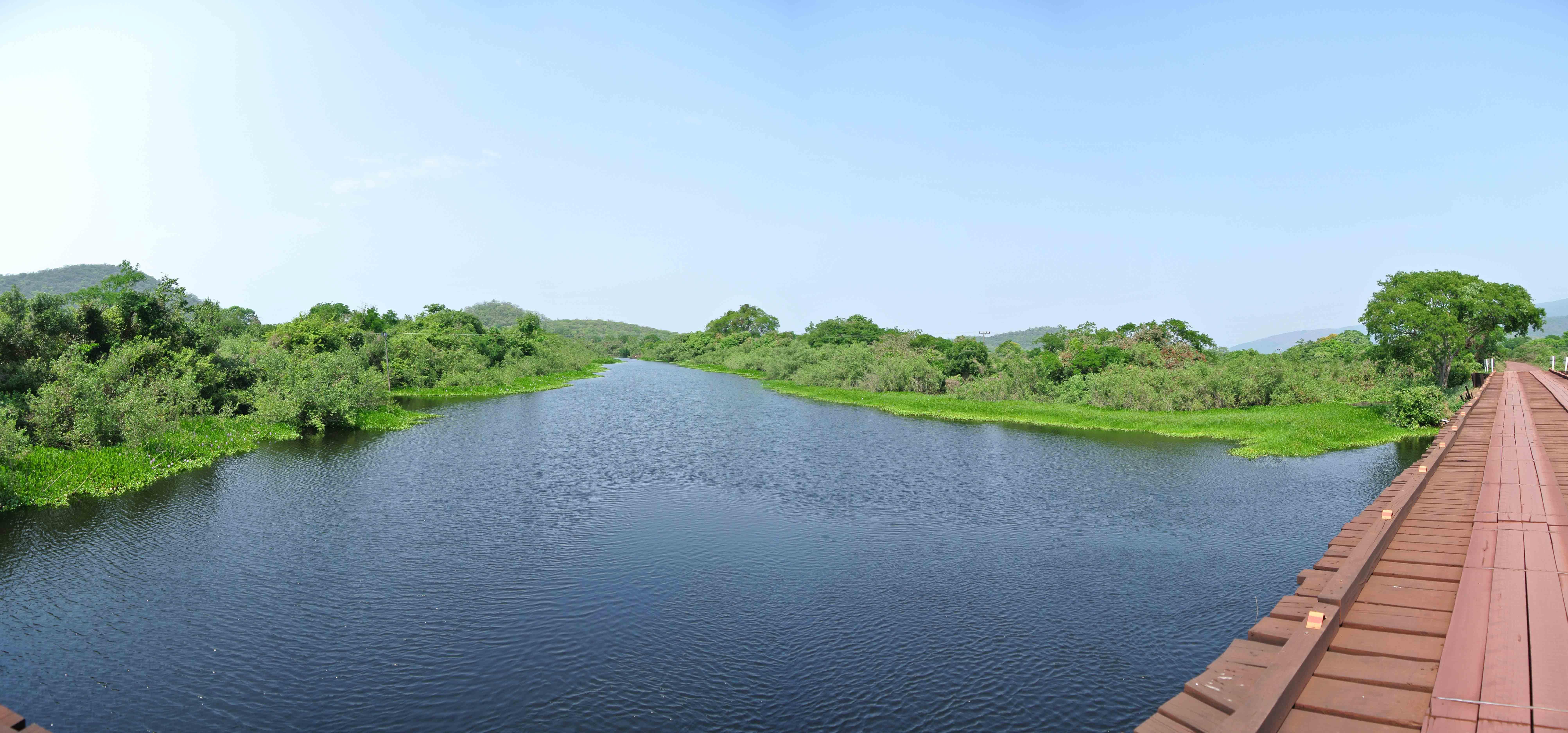 036 2409 Pantanal - Passo do Lontra - Corumba 831jpg