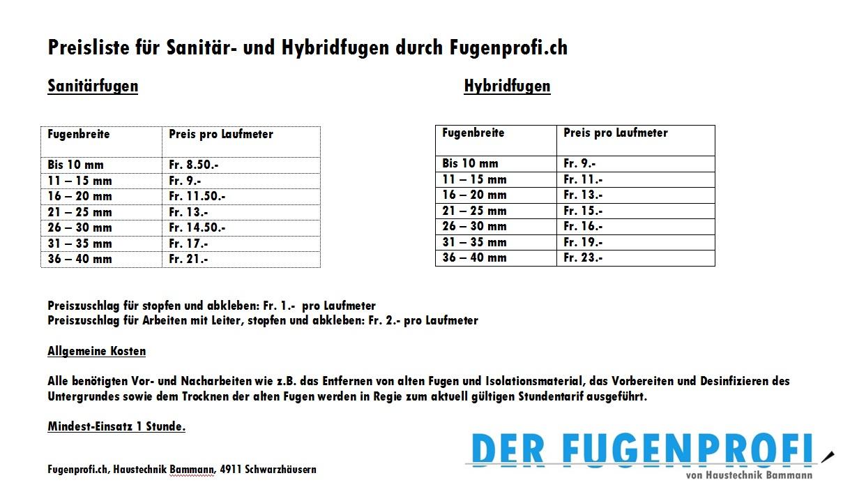 Beliebt Fugenprofi DS91