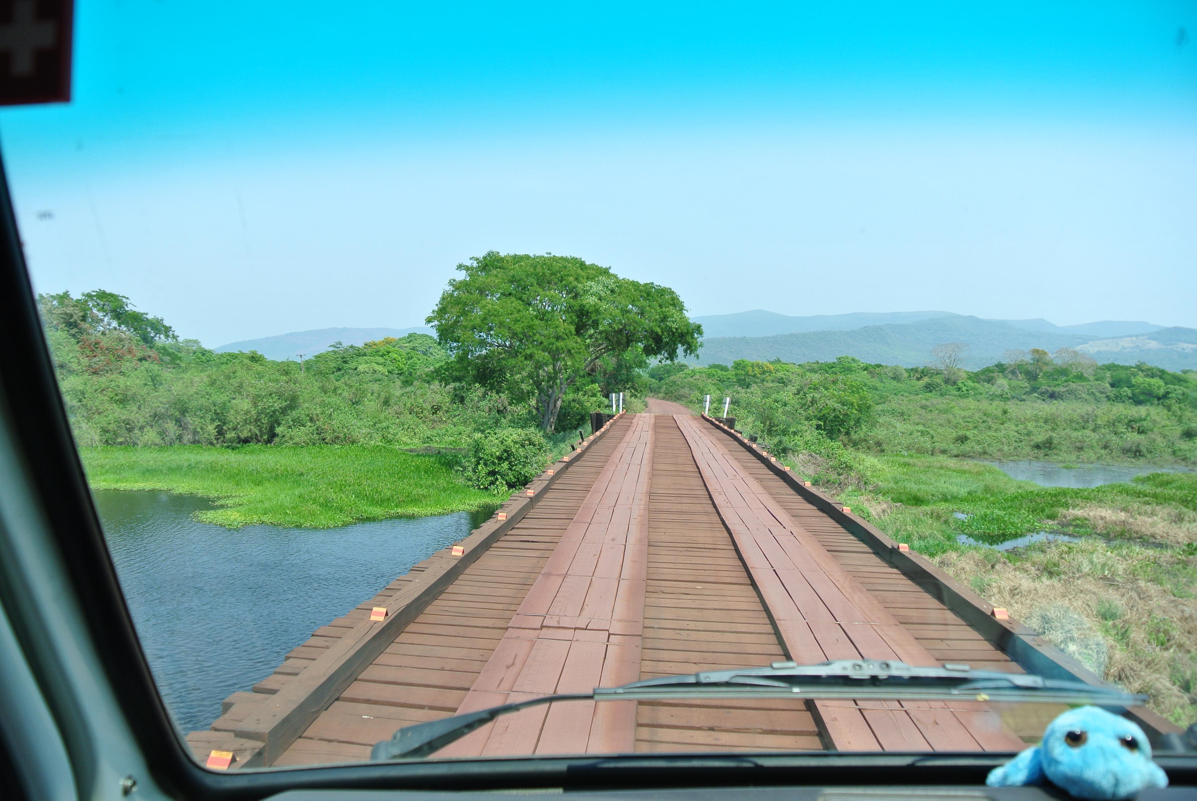 039 2409 Pantanal - Passo do Lontra - Corumba 79JPG