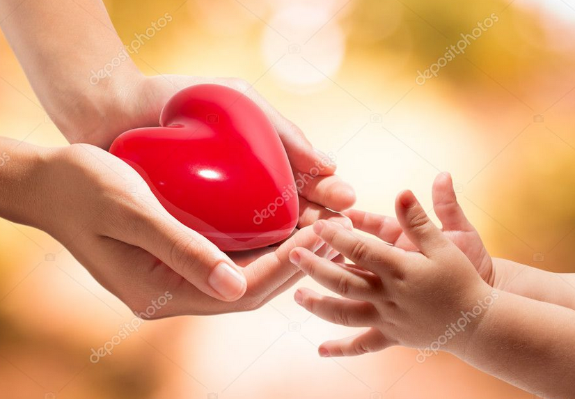heart in hands with babypng