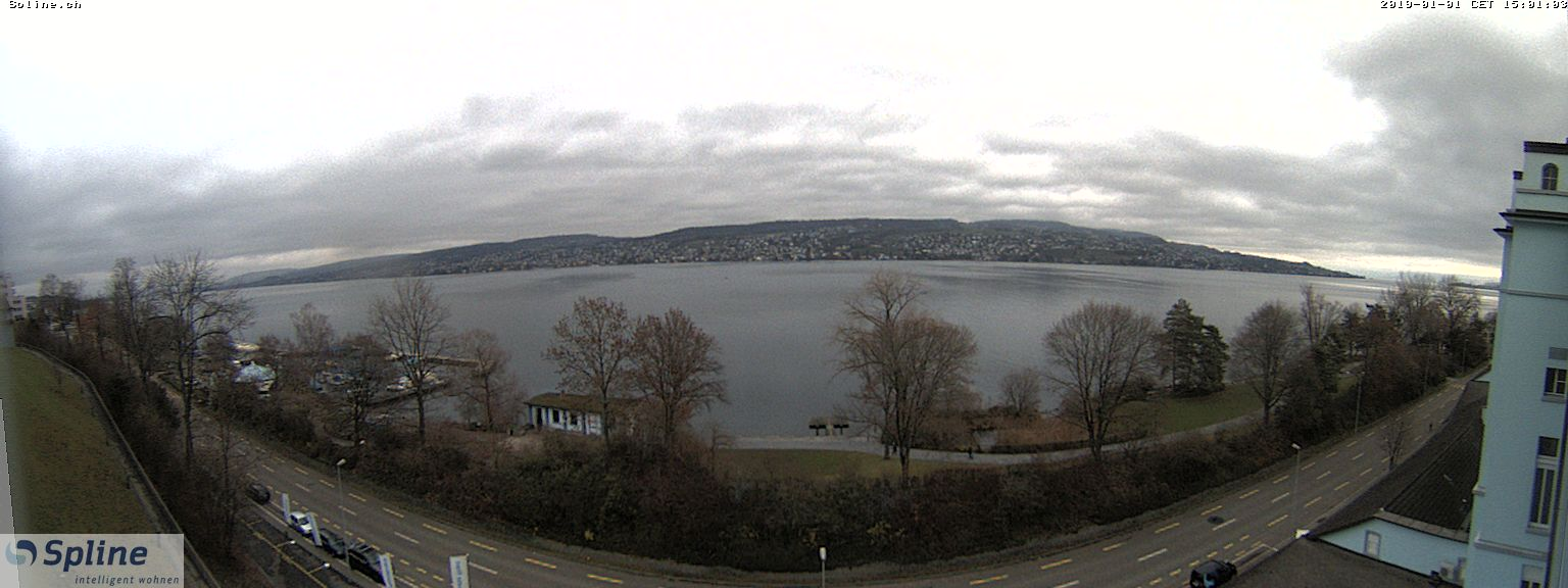 Webcam Thalwil Panorama