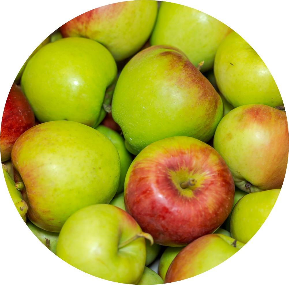 Apfel rundjpg