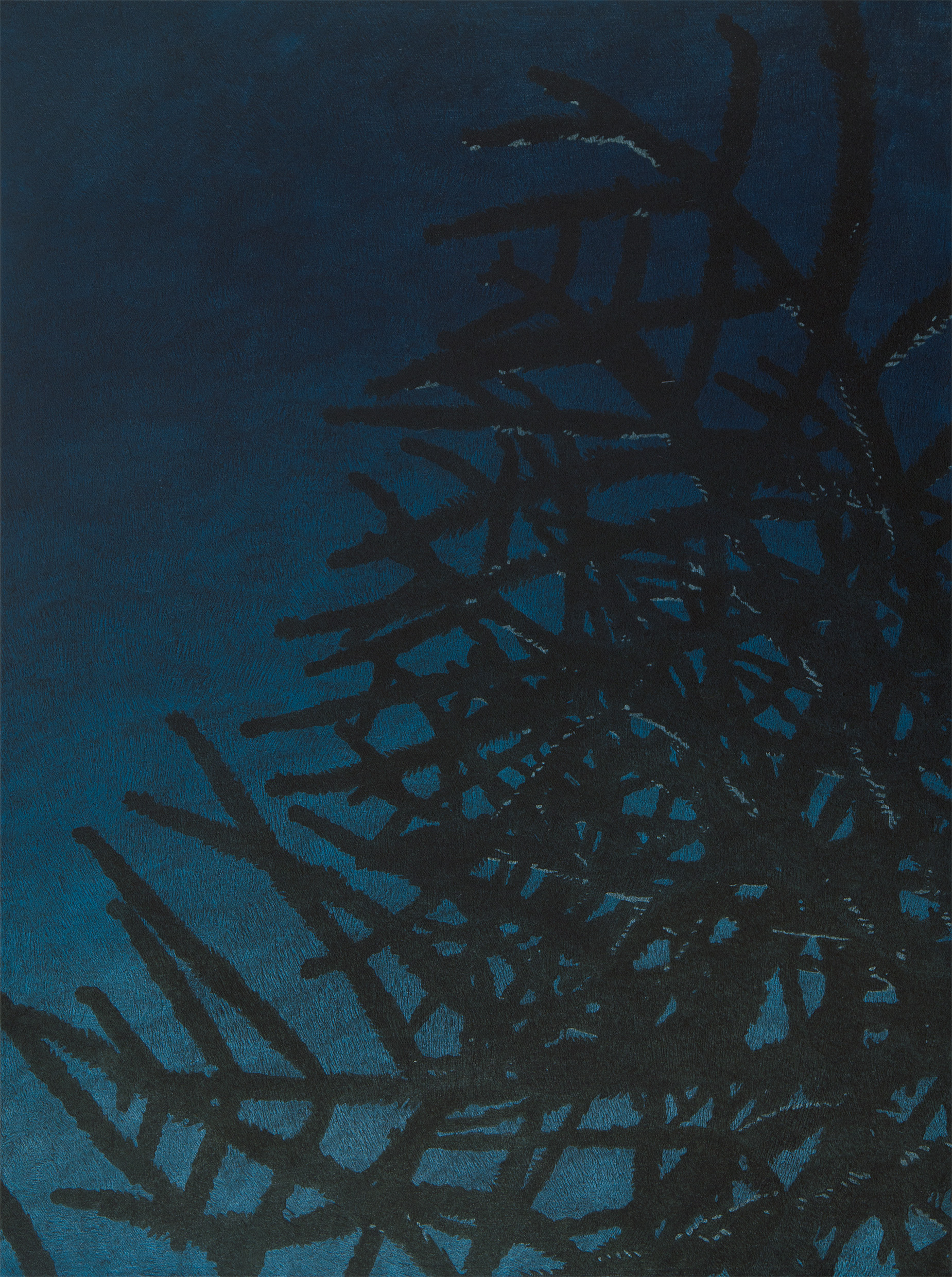 "Araucaria Araucana in Hernals, 2014 | oil on canvas | 60x80cm (19.6""x31.4"")"