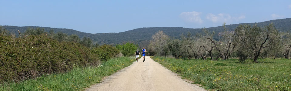 fotos_laufwoche_toscana_april2015
