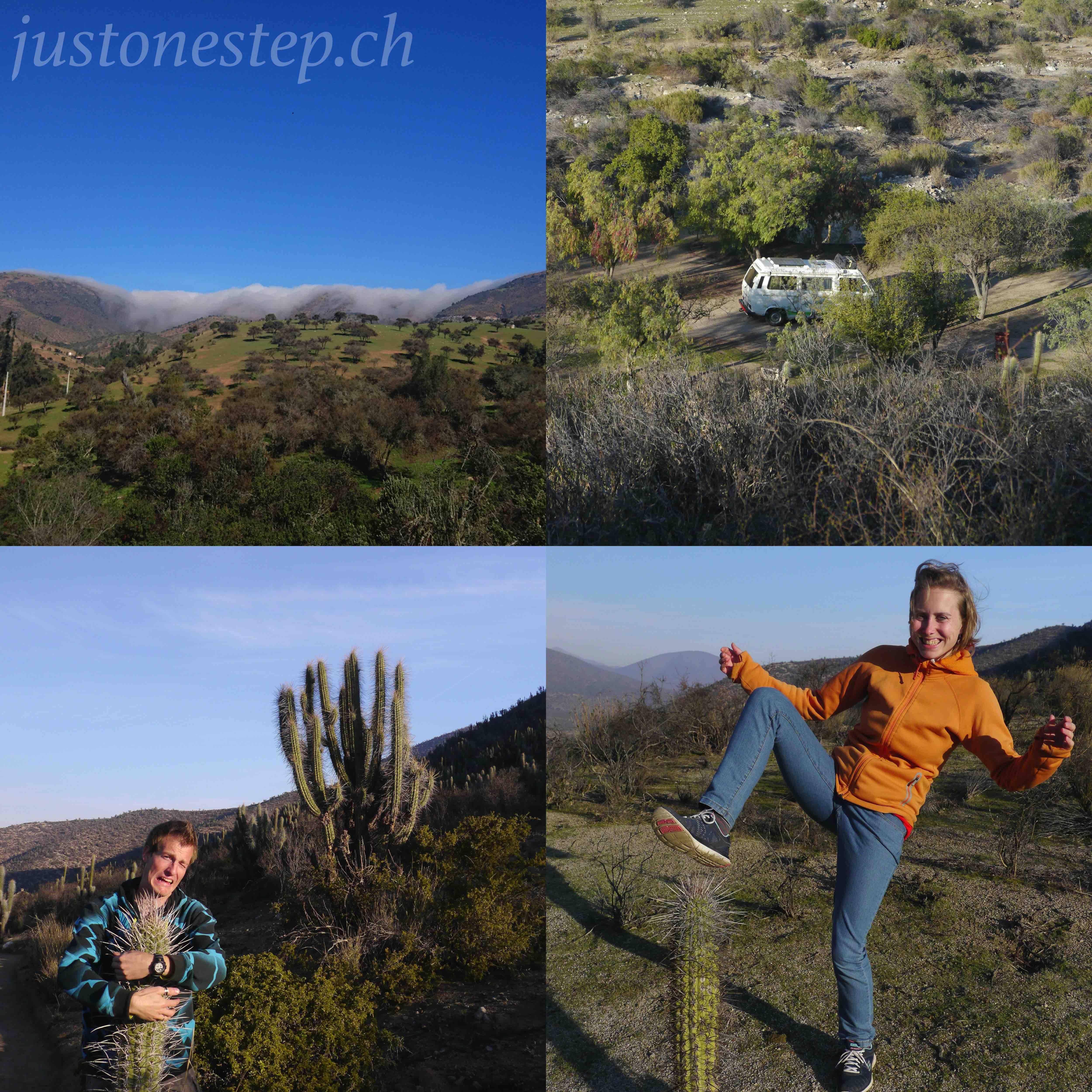 0030206illapel-reservanationallaschinchillas1jpeg